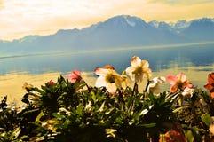 Lago geneva e tramonto, Montreaux, Svizzera, Europa Immagine Stock Libera da Diritti