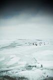 Lago ghiacciato Immagine Stock
