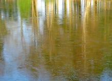 Lago ghiacciato sfrigolato Autumn Trees Reflection Fotografia Stock Libera da Diritti