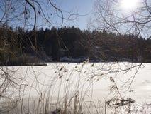 Lago ghiacciato in trentino Fotografia Stock