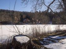 Lago ghiacciato in trentino Fotografia Stock Libera da Diritti