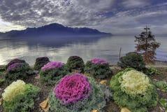 Lago Ginebra, Montreaux, Suiza Imagen de archivo