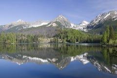 Lago glaciale in montagne di Tatra Fotografie Stock