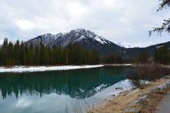 Lago glacier no parque nacional de Banff imagem de stock
