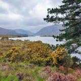 Lago Glenveagh Imagen de archivo libre de regalías