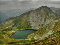 Lago goat em montanhas de Tomania Fotos de Stock Royalty Free