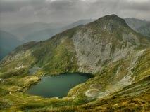 Lago goat in montagne di Tomania Fotografie Stock Libere da Diritti