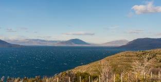 Lago Gr Toro Parque Nacional Torres del Paine in Chili Stock Afbeelding