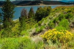 Lago Granby Foto de archivo libre de regalías