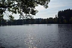 Lago grande da floresta em Alemanha Fotos de Stock