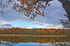 Lago grass en caída Imagen de archivo libre de regalías