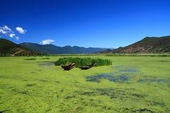 Lago grass en el lago Lugu, China Foto de archivo