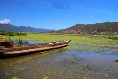 Lago grass en el lago Lugu, China Imagen de archivo
