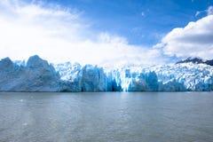 Lago grey - grå glaciär - chile royaltyfria foton