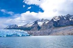 Lago grey - grå glaciär - chile arkivbilder