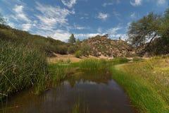 Lago gulch del oso, pináculos parque nacional, California foto de archivo libre de regalías