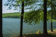 Lago Guntersville, AL Imagen de archivo libre de regalías