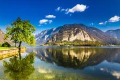 Lago in Hallstatt ad estate in alpi, Austria Fotografie Stock Libere da Diritti