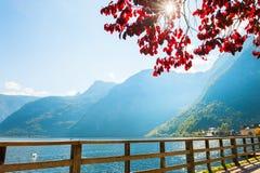 Lago Hallstatter nel villaggio di Hallstatt, alpi austriache Immagini Stock Libere da Diritti