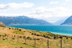 Lago Hawea e pascoli un giorno soleggiato immagini stock libere da diritti