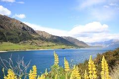 Lago Hawea Nuova Zelanda fotografia stock