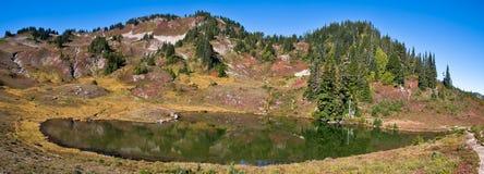 Lago heart Imagem de Stock Royalty Free