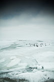 Lago helado Imagen de archivo