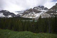 Lago Herbert Foto de Stock Royalty Free
