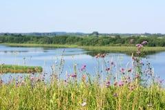 Lago hermoso Fotos de archivo libres de regalías