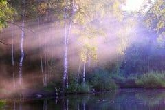 Lago hermoso con el puente de madera y los patos Fotografía de archivo libre de regalías
