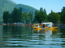 Lago hermoso Dal en Kashmir-8 Fotos de archivo libres de regalías
