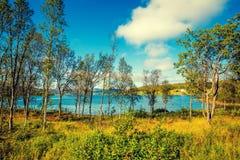 Lago hermoso de la montaña Árboles de abedul en la orilla del lago Imagenes de archivo
