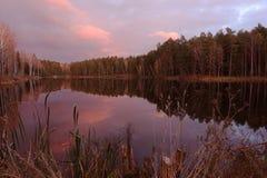 Lago hermoso del bosque en la puesta del sol asombrosa Fotos de archivo libres de regalías