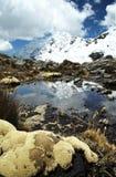 Lago hermoso en montaña de las cordilleras Foto de archivo libre de regalías