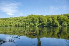 Lago Herthasee nel parco nazionale Jasmund vicino a Sassnitz fotografia stock libera da diritti