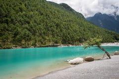 Lago high mountain accanto alla foresta Immagini Stock Libere da Diritti