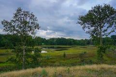Lago holandês Imagens de Stock Royalty Free