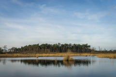 Lago holandês Foto de Stock