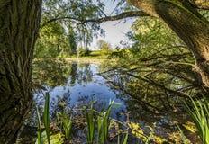 Lago Hondegat em Asperen Imagem de Stock