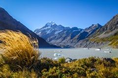 Lago hooker no cozinheiro da montagem de Aoraki, Nova Zelândia imagem de stock royalty free