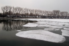 Lago Houhai, Pequim na mola adiantada fotos de stock