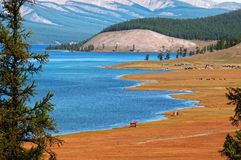 Lago Hovsgol, Mongolia Imagen de archivo libre de regalías