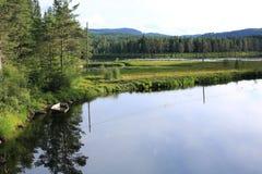 Lago idílico em Noruega Imagem de Stock Royalty Free