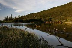 Lago Iezer Fotos de archivo