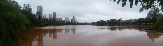 Lago Igapà ³ -隆德里纳-巴西 库存图片