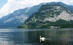 Lago il Alpes - in Austria Fotografia Stock Libera da Diritti