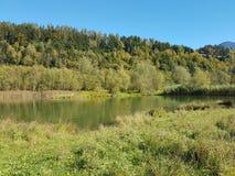 Lago impressionante no meio do outono Imagem de Stock