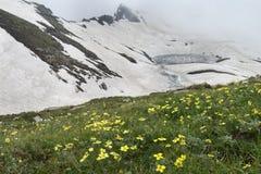 Lago innevato della montagna nella sorgente Immagine Stock Libera da Diritti
