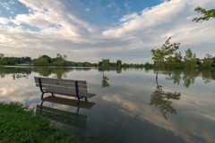 Lago inundado Fotografia de Stock Royalty Free