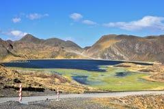 Lago invaso con alta erba verde Fotografie Stock